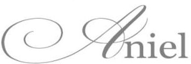 Aniel-logo